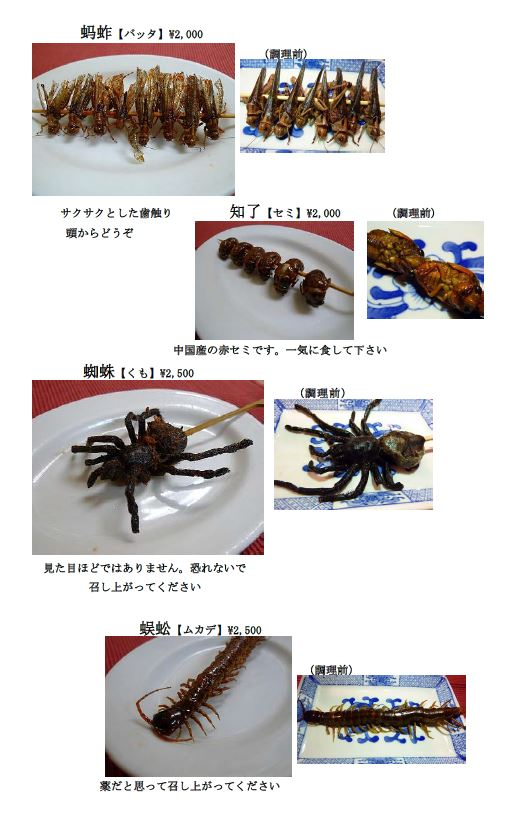 201603_insect
